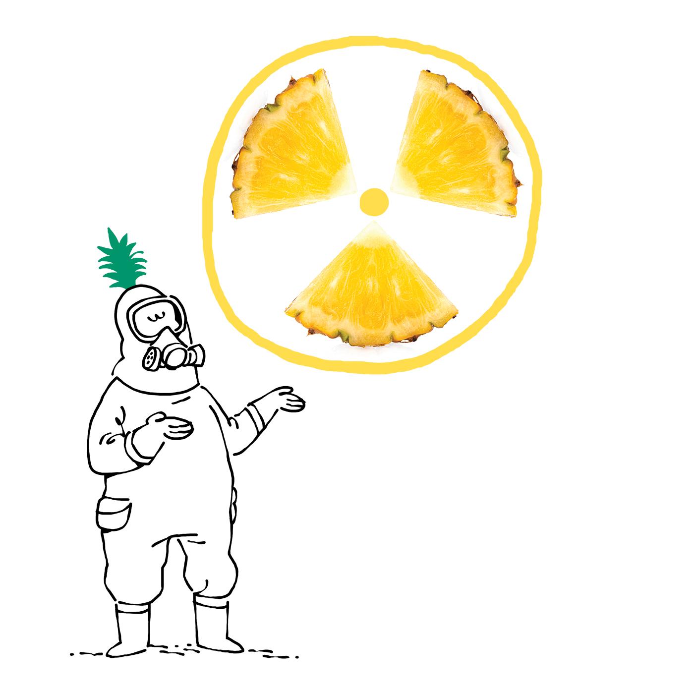 Climat-ananas