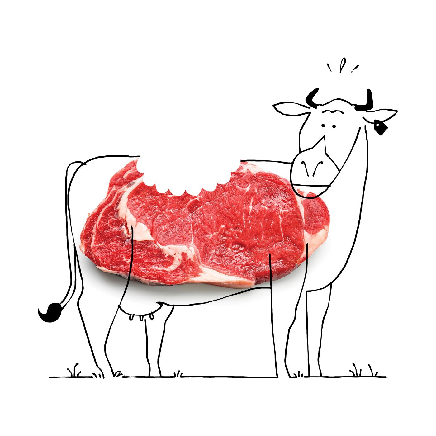 Climat-viande
