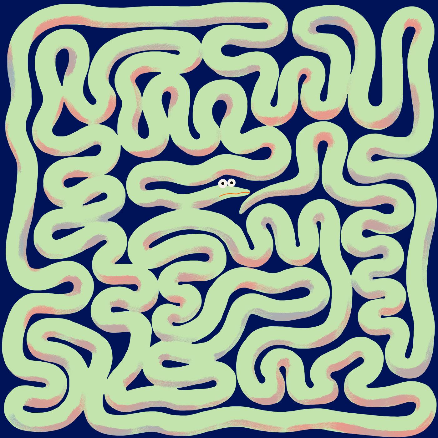 Diutissime-Serpentinouze-Labyrinthus
